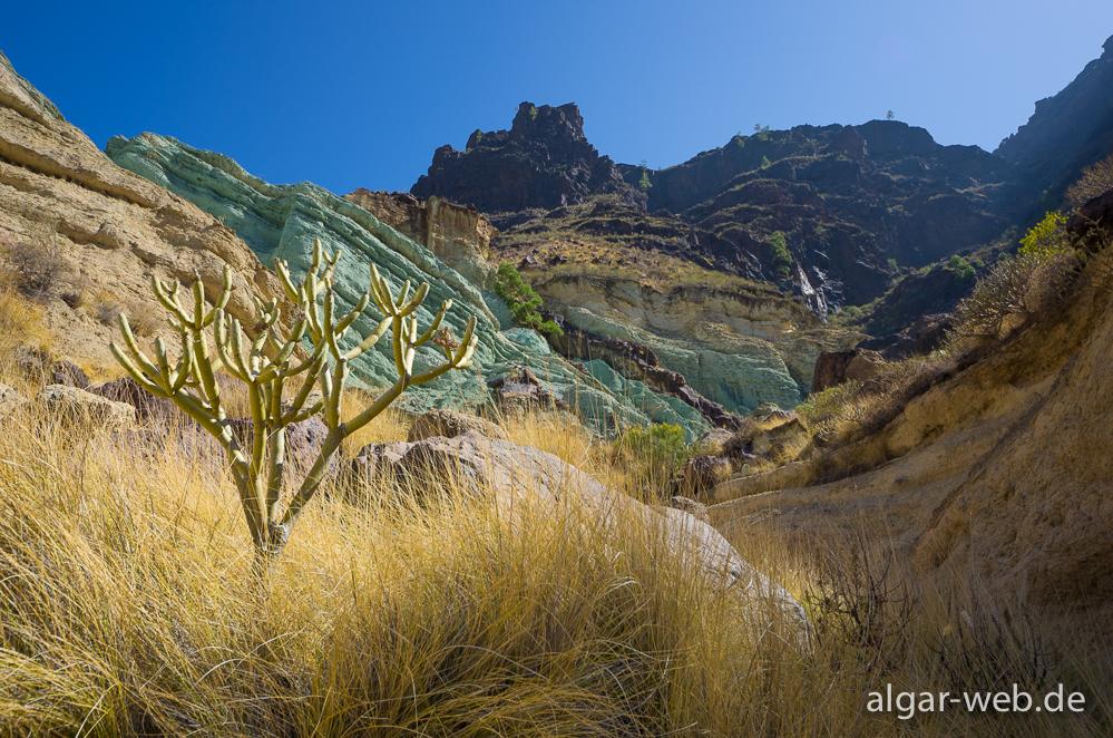 Bild der woche los azulejos gran canaria algar algarve kreta und - Los azulejos gran canaria ...