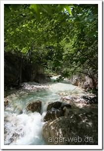 Am Fluss in Loutraki I