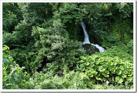 Wasserfall und üppiges Grün in Naoussa I